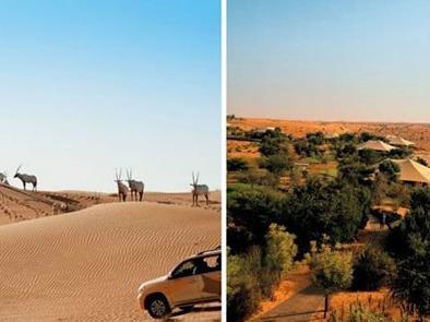 پارک حیات وحش الماها